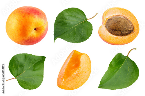 Canvastavla Apricot collection isolated