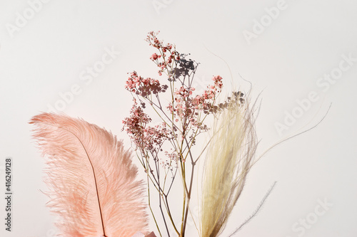 Fototapeta Pink-yellow feather and dry flowers on white background. obraz