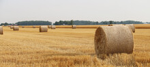 Freshly Harvested And Rolled Hay Bales Provide A Beautiful Counrty Landscape In Rural Ohio.