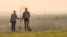 Young Couple With A Tree Seedling And A Shovel Are Standing Nearby In A Picturesque Place