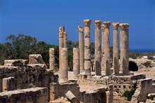 Palace Columns, Tolemaide (Ptolemais), Cyrenaica, Libya