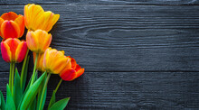 Beautiful Tulip Flowers On A Dark, Black Wooden Background. Spring Bouquet. Flat Lay, Top View, Copy Space.