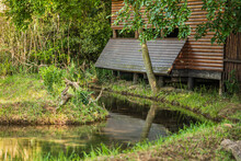 Wooden Bird Hideout In A Lush Green Forest With A River Running By