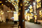 Fototapeta Londyn - Drzewko oświetlone na starym mieście