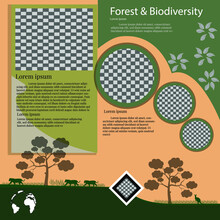 International Day Of Forests. Social Media Template For International Day Of Forests. Education To Know The Forest. Sustaining All Life On Earth.