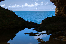 Barbados Animal Flower Cave Ocean Scenic Vista