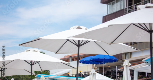 Fotografie, Obraz Sun loungers by the sea.