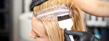 The Hairdresser Dyeing Blonde Hair Roots With A Brush For A Young Woman In A Hair Salon