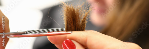 Billede på lærred Hairdresser hold strand of hair in her hand and cut part of it with scissors to visitor close-up in beauty salon