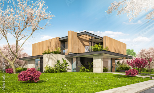 Fototapeta 3d rendering of modern cozy house with parking and pool for sale or rent with wood plank facade and beautiful landscaping. Fresh spring day with a blooming trees with flowers of sakura on background obraz