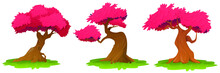 Trees With Pink Foliage Isolated On White Background. Beautiful Pink Leaves Of A Tree, Sakura, Cherry Tree. Vector Illustration