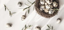 Quail Eggs In Bird Nest On White Background With Shadow. Happy Easter. Rustic Style. Copy Space. Flat Lay, Top View. Banner