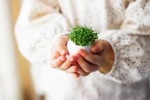 Little Girl Holding Cress Saladin  Eggshell In Her Hands