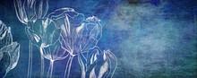 Tulpen Zeichnung Malerei Trauer Konzept Karte