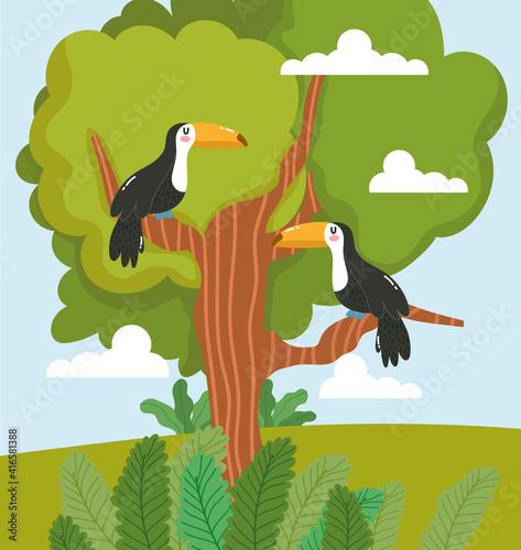 Fototapeta premium Animals toucan tree
