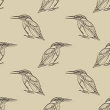 Seamless Geometrical Monochrome Pattern With Silhouettes Of Kingfisher Bird. Hand Drawn Linear Ink Sketch. Vintage Style.