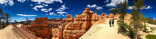 Bryce Canyon Landscape On A Beautiful Summer Day - Panoramic View