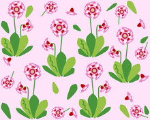 Plant Pattern With Pink Primrose Flowers