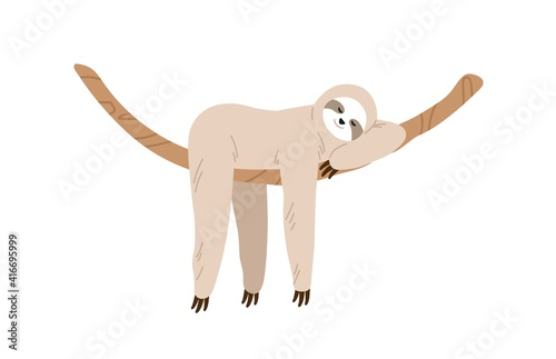 Fototapeta premium Cute and funny sloth hanging on tree branch and sleeping. Slow and lazy animal relaxing on liana. Baby character. Colored flat vector illustration isolated on white background