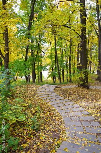 Autumn landscape in Tsaritsyno Park in Moscow, Russia © koromelena