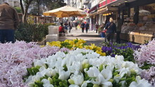 Flowers In The City With People