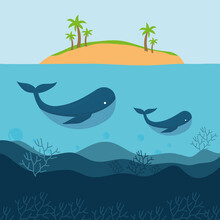 Pair Of Whales Under One Island