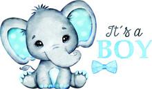 Blue Boy Elephant Watercolor Vector Images, Blue Ears Cute Baby Elephant Clip Art