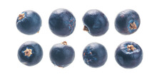 A Set Of Juniper Berries. Isolated On A White Background