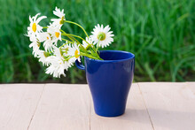 Summer Composition With White Chamomile Flowers In Blue Mug On Wooden Table On Green Background With Bokeh Effect