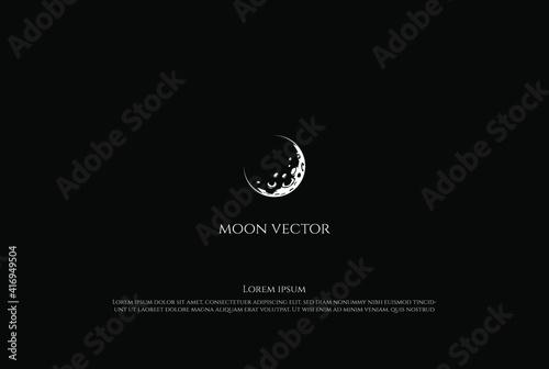 Obraz na płótnie Vintage Retro Moon Crescent Logo Design Vector