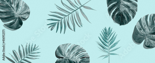 Tropical palm leaves from above - flat lay © Tierney