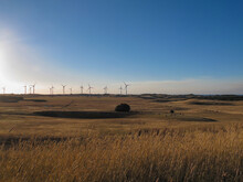 Sunset Over The Field With Wind Turbines And Cangaroos