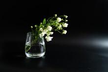 黒い背景の白いバラ