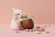Cute White Easter Bunny Rabbit With Chocolate Egg And Colorful Sweets On Pink Background