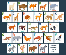 Cute Animals Alphabet Cards For Kids Education. Educational Preschool Learning ABC Card With Animal And Letter. Cartoon Vector Illustration Set