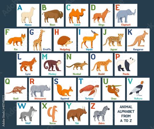 Fototapeta premium Cute Animals alphabet cards for kids education. Educational preschool learning ABC card with animal and letter. Cartoon vector illustration set