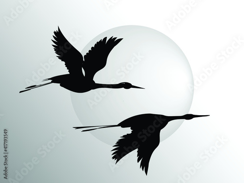 Two flying herons against the background of a large solar circle Fototapeta