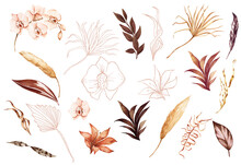 Bohemia Orchids And Dry Palm Leaves, Graceful Plants, Frames, Bouquets. Wedding Set Luxury Tropical And Copper