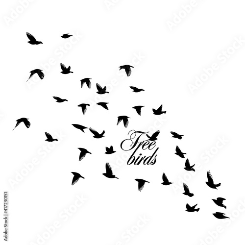 A large flock of flying birds. Vector illustration Fototapeta