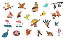 Set Of 21 Bird Icons, Birds, Birdies, Eggs, Nest, Birds Sleeping, Flamingoes, Parrots, Flying Birds, Birds Eating Fruit, Birds Making Nest, Birds Feeding Babies, Baby Birds, Lovely Birds Couple, Bats