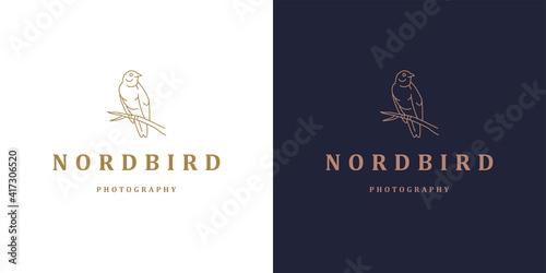 Fotografie, Obraz Bird sitting on branch logo template linear vector illustration