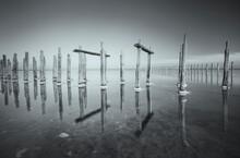 Conceptual Black And White Landscape - Old Salt Indastrial Lake