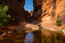 Red Rock Canyon With Small Stream