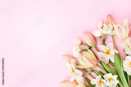 Spring blossoming daffodils and tulip flowers on light pink background, pastel and soft springtime floral card © ulada