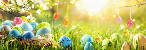 canvas print motiv - Pasko Maksim  : Spring Natural Background With Easter Eggs and Fresh Green Grass