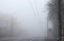 Landscape Of A Heavy Foggy Road With A White Line And A Pedestrian Crossing. Foggy Road With Poor Visibility For Driver And Pedestrian. Accident Risk. Security Drive Concept. No Focus