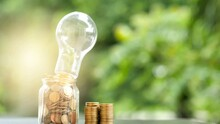 Energy Saving. Stacks Of Coins In Bottle And Tree Growing In Light Bulb