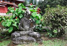 Peaceful Buddha Statue In Temple Garden