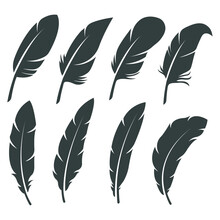 Feather Element Icons - Flat Design Elements For Decoration On Social Media Posts Or Stationery