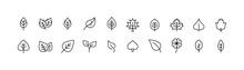 Simple Line Set Of Leaf Icons.